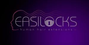 easilocks 300x154 - easilocks