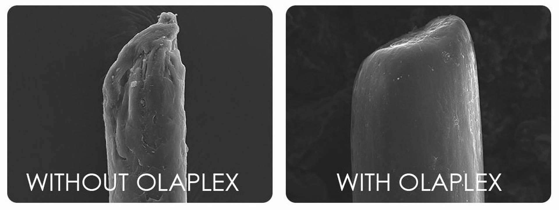 Mini Olaplex Before and after - Olaplex-Treatment